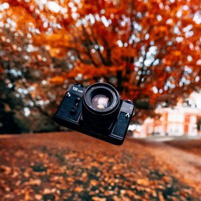 Fotokurs & Fotosafari