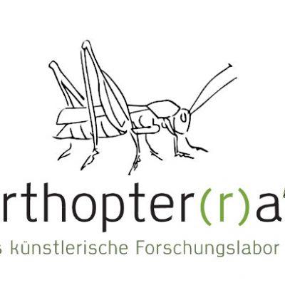 Kunst trifft Wissenschaft -Workshop Riesenpuppenbau - Teil 3