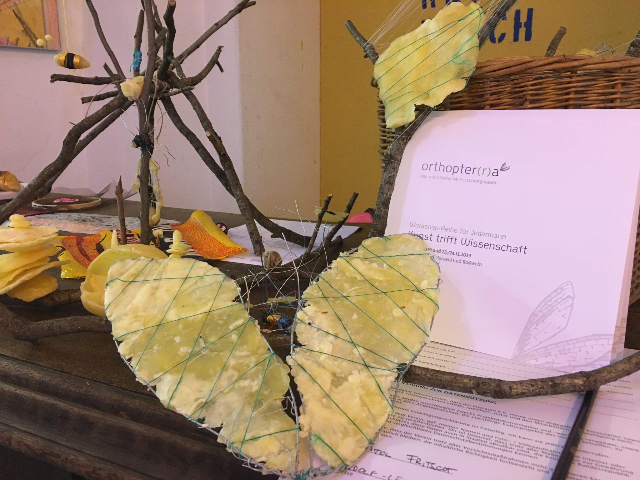 Orthopter(r)a Workshopserie Kunst trifft Wissenschaft